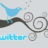 Ausgabe 05: Warum twitterst du eigentlich? (Jun09)